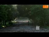 Ходячие мертвецы,отрывок 9 серия.Все серии на imax-tv.ru